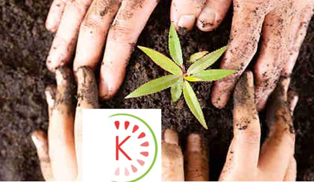 KIWAI : LA PLATEFORME NORMANDE DE FINANCEMENT PARTICIPATIF